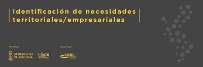 Programa Identificación de Necesidades Territoriales/Empresariales